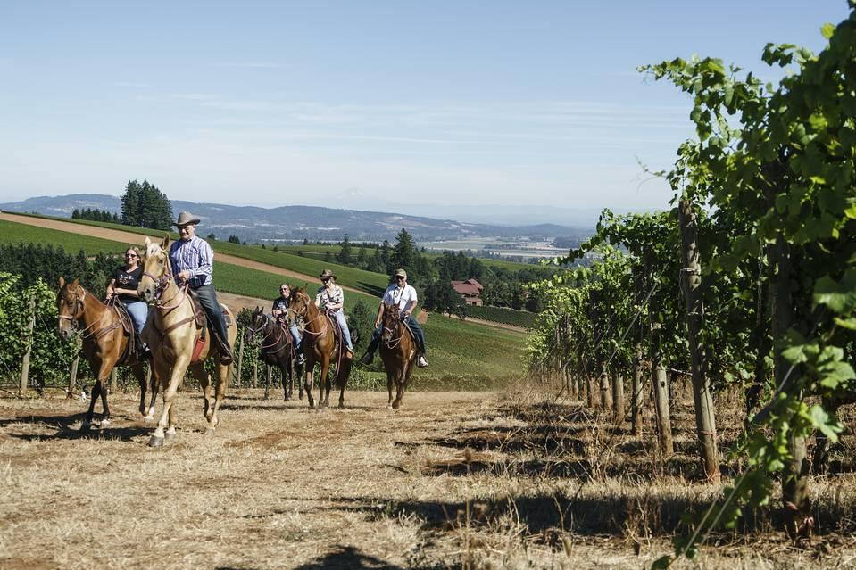 WSJ Willamette Valley Winery